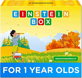 Einstein Box for 1 Year Old Baby Boys and Girls, Learning and Educational Gift Pack of Toys and Books, Multicolour