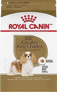 cavalier king charles spaniel pet supplies