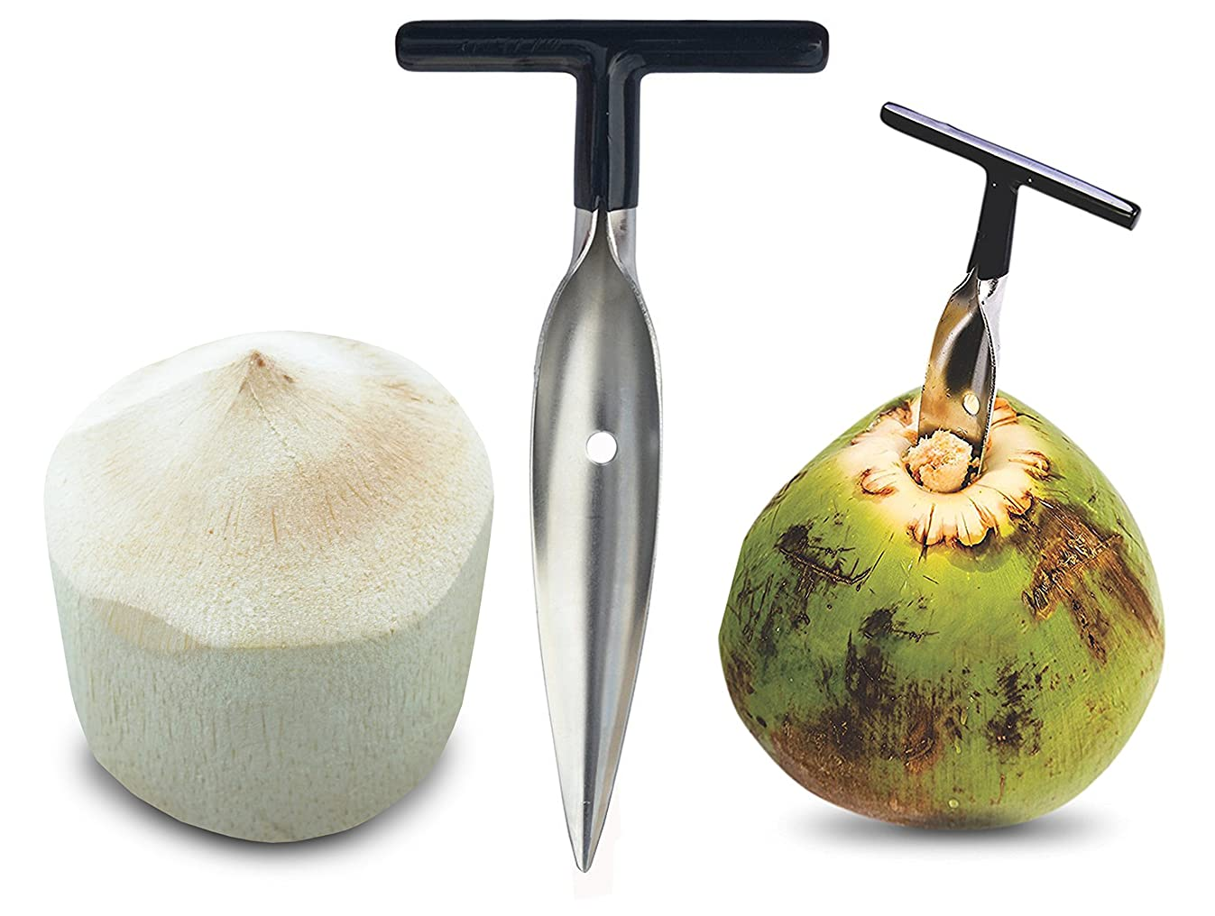 Stord Coconut Opener for Fresh Green Young Coconut Water - Works With Peeled Thai Young White Coconuts - Open in Seconds Super Safe Easy and Fast