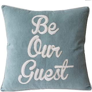 Best be my guest pillow Reviews