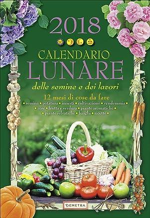 Calendario Lunare 2020 Semine.Amazon It Aa Vv Aa Vv Calendari E Agende Libri