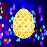 輝かしい卵