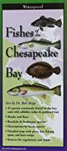 Fishes of the Chesapeake Bay: Folding Guide (Foldingguides)