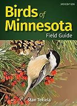Download Birds of Minnesota Field Guide (Bird Identification Guides) PDF