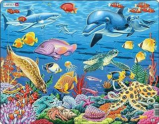 Larsen FH29 La Vie Marine sur Un récif de Corail, Puzzle Cadre avec de 35 pièces