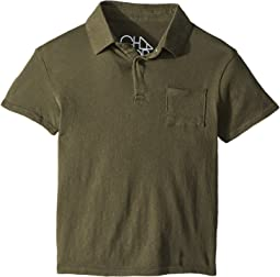Cotton Jersey Short Sleeve Polo (Toddler/Little Kids)