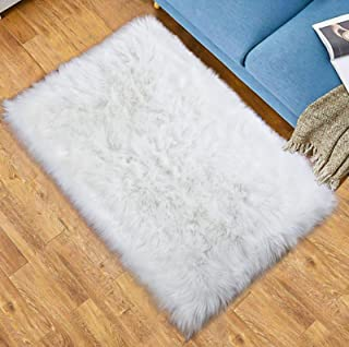 Best cat on rug Reviews