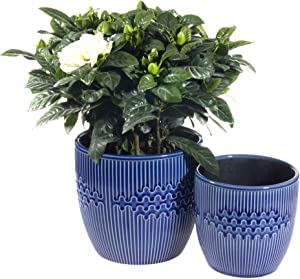 Plant Pots – 5 and 6 Inch Cylinder Blue Ceramic Planters or Small Snake Plant, Garden Flower Pots Indoor and Outdoor Set of 2