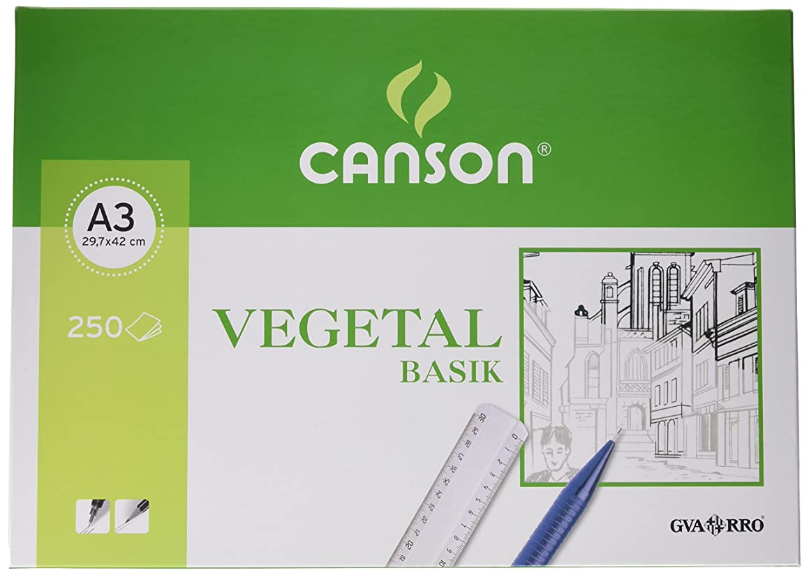 Canson 406244?–?Vegetable Paper 250?Sheets