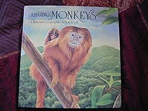 Pop-Up: Amazing Monkeys