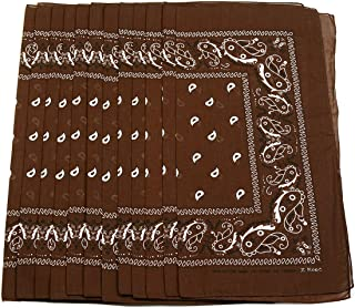 Paisley & Graphic Design Bandana Scarf 12-Pack (100% Cotton)
