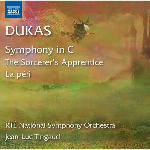 Dukas: L'apprenti sorcier, La péri & Symphony in C Major di RTÉ National  Symphony Orchestra su Amazon Music - Amazon.it