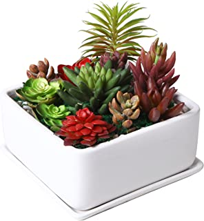 Modern 7 inch Square Ceramic Succulent Planter Pot with Drainage Tray, Window Box & Saucer, White