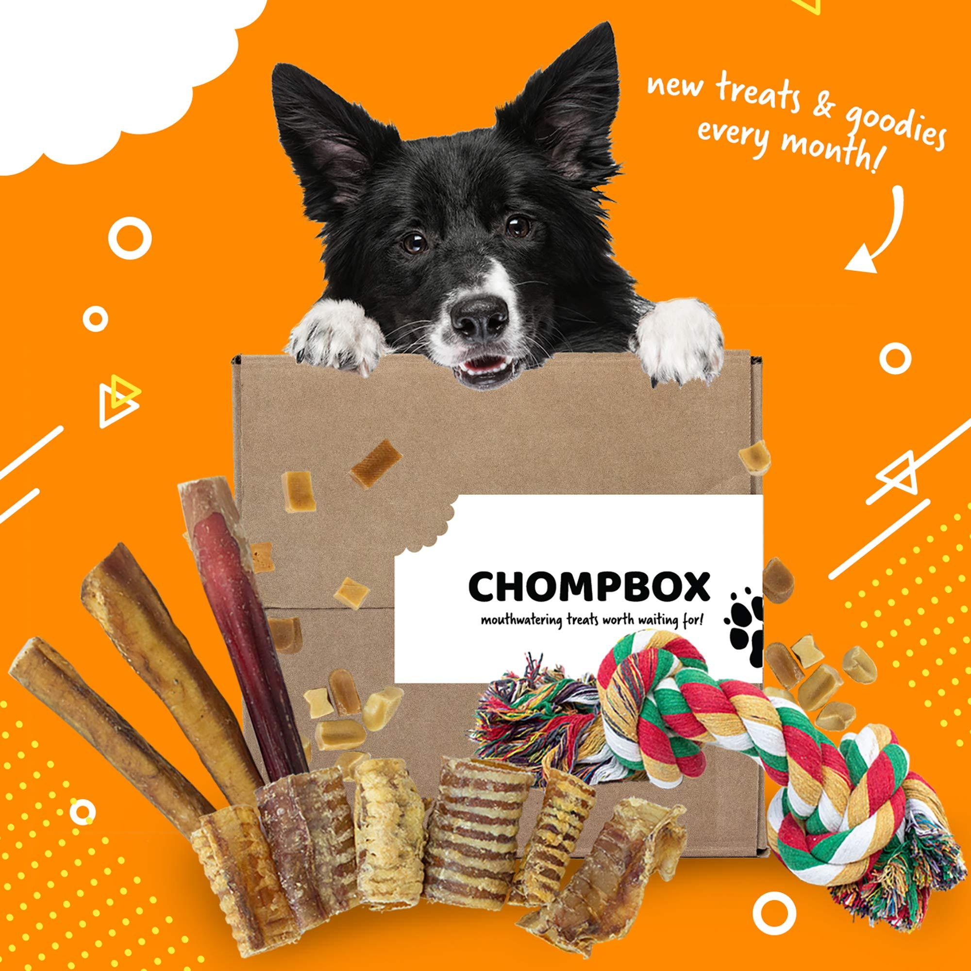 Chompbox - Monthly Dog Treats and Pet Supplies Subscription Box