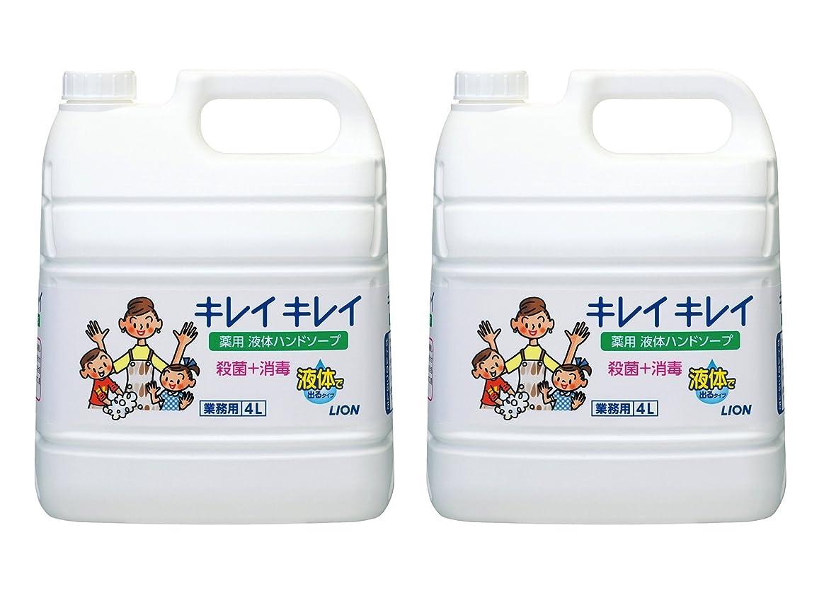 保証する湿原とても多くの【大容量】キレイキレイ 薬用ハンドソープ 4L×2個