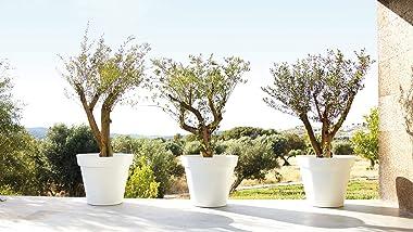 Artevasi 5600442807530 Capri Pot 35 cm, White, White