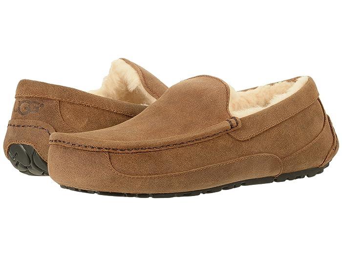 UGG  Ascot - WIDE (Chestnut) Mens Slippers