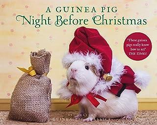 A Guinea Pig Night Before Christmas (Guinea Pig Classics)