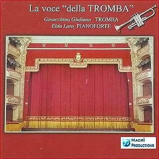 Norma: Casta Diva (Instrumental Version)