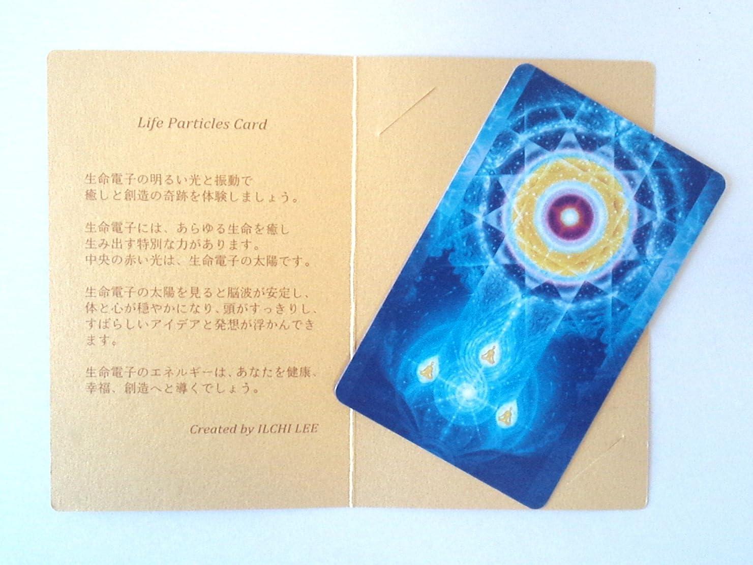 倉庫つまらない禁輸生命電子カード