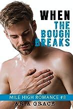 When The Bough Breaks (M/M Romance) (Mile High Romance Book 8)