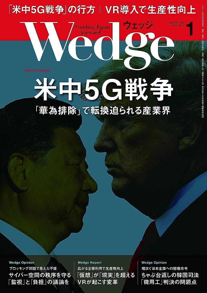 微妙夢遠近法Wedge (ウェッジ) 2019年 1月号 [雑誌]