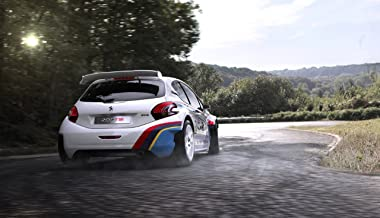 Peugeot 208 T16 (2013) Art Poster Print on 10 mil Archival Satin Paper White Rear Side Speed View 36