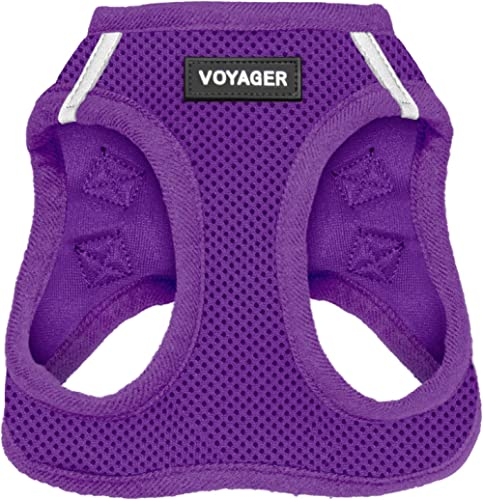 Voyager Step-in Air Dog Harness - All Weather Mesh, Step in Vest Harness for Small and Medium Dogs by Best Pet Suppli...