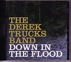 Down in the Flood Cd Single Bob Dylan Cover Song) (W/ 2 Rare Edits)