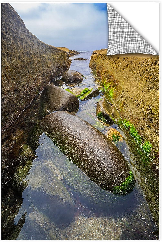 ArtWall Scott Campbell's Low Tide Trough 2, Removable Wall Art Mural 12x18
