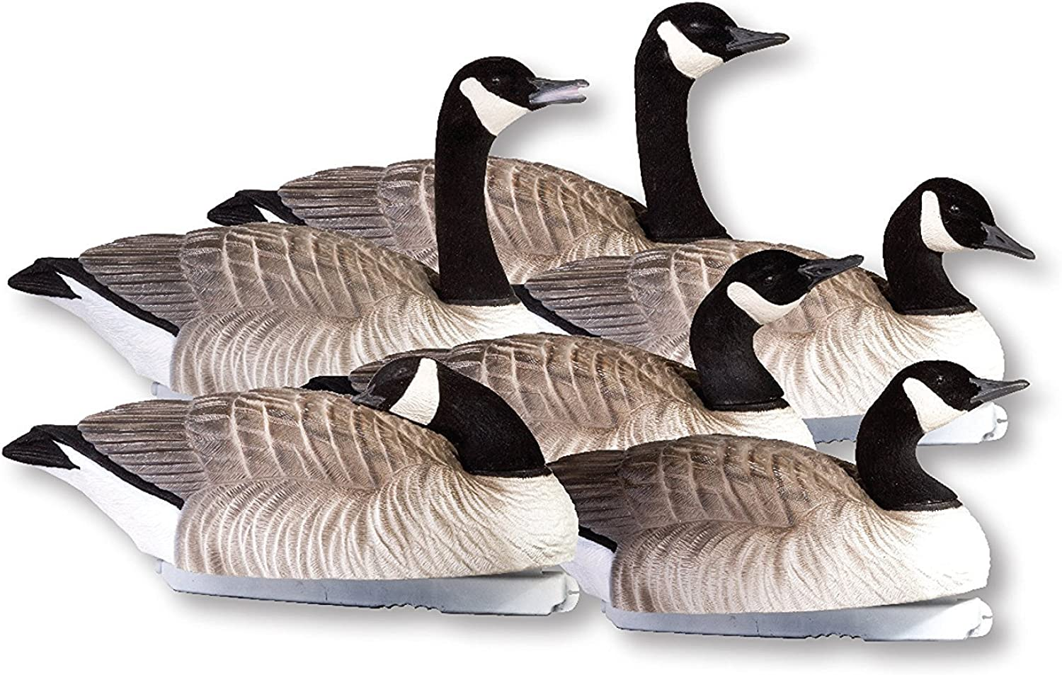 Final Approach 474151FA Fa Last Pass Hd Active Floating Honker Decoys, 6 Pack