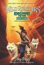 Wild Rescuers 2 Escape To The Mesa