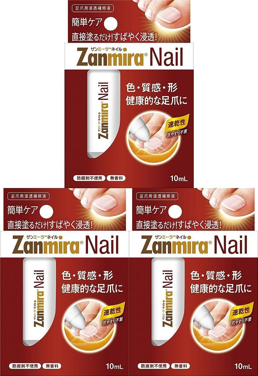 仮定夕方悲しいことに【3個セット】ザンミーラ ネイル Zanmira Nail 10ml 足爪用浸透補修液