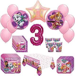 Girl Pups Paw Patrol Skye Everest 3rd Birthday Party Pack 52 Piece Set