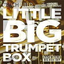 Little Big Trumpet Box