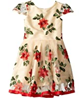 Poinsettia Holiday Party Dress (Toddler/Little Kids)