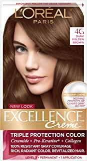 Best dark golden brown hair dye Reviews
