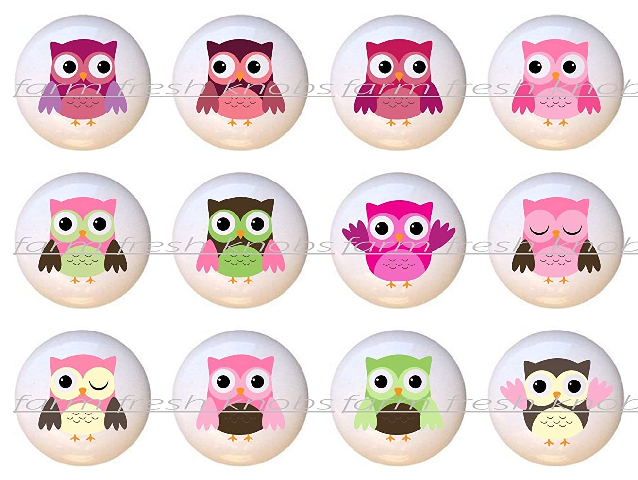 SET OF 12 KNOBS - Baby Girl Owls by PP - DECORATIVE Glossy CERAMIC Cupboard Cabinet PULLS Dresser Drawer KNOBS