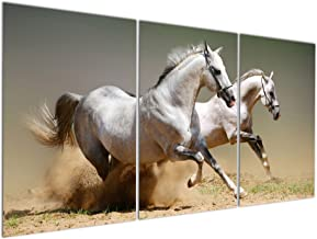 Gardenia Art - Animal World Series 33 Running White Horse Series 2 Canvas Wall Art Paintings Animals Green Pictures Artworks for Bedroom Living Room Decoration,16x24 inch/Piece, Framed, 3 Panels