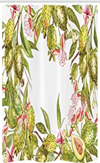 ABAKUHAUS Floral Stall Shower Curtain, Feijoa Tropical Fruit Plant with Exotic Leaves on Plain Background, Fabric Bathroom...