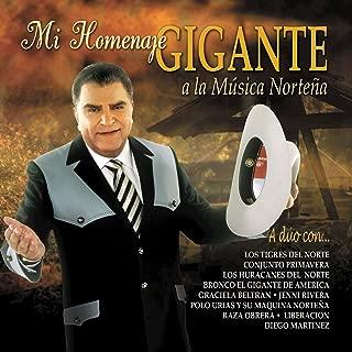 Mi Homenaje Gigante A La Musica Norteña