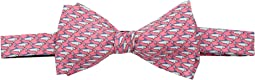 Vineyard Vines - School of Shark Printed Bow Tie