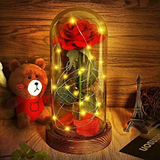 Beauty and The Beast Rose, Red Silk Rose That Lasts Forever in a Glass Dome with LED Lights,Gift for Valentine's Day Wedding Anniversary Birthday