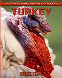Facts About Turkey A Picture Book For Kids