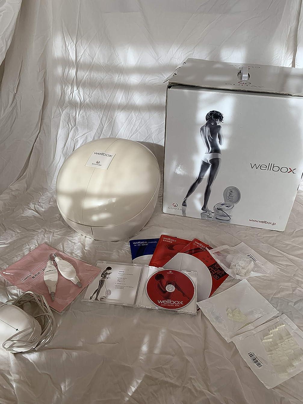 唯一ピーブ縁石wellbox(ウェルボックス)家庭用エンダモロジー【国内正規品】LPG社製 momoeri Styleブック付き