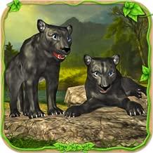 Furious Panther Simulator
