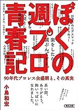 表紙: ぼくの週プロ青春記 90年代プロレス全盛期と、その真実 (朝日文庫) | 小島 和宏