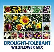 Drought Resistant Tolerant Wildflower Seeds - Bonus 8 eBook Gardening Series - Open-Pollinated Bulk Flower Seed Mix for Be...