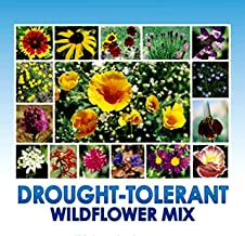 Drought Resistant Tolerant Wildflower Seeds - Bonus 8 eBook Gardening Series - Open-Pollinated Bulk Flower Seed Mix for Beautiful Perennial, Annual Garden Flowers - No Fillers - 1 oz Packet