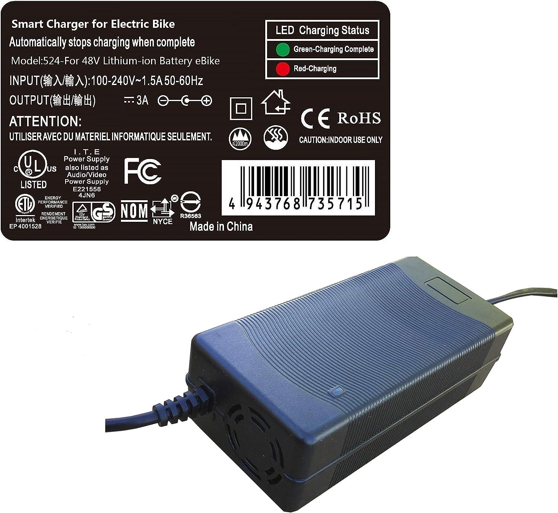 PowerTech Supplier Smart Charger for RAD Power 48V Battery Electric Bike eBike